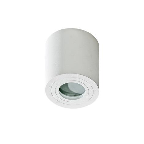 Azzardo AZ2690 - Kopalniška stropna svetilka BRANT 1xGU10/50W/230V IP44
