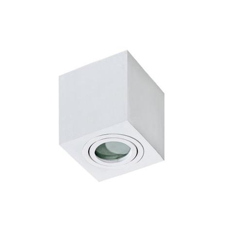 Azzardo AZ2822 - Kopalniška stropna svetilka BRANT 1xGU10/50W/230V IP44