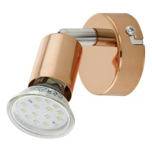 Eglo 94772 - LED reflektor BUZZ-COPPER 1xGU10/3W/230V