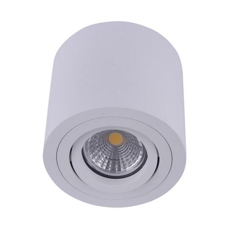 Emithor 48606 - Stropni reflektor SURFACE 1xGU10/50W/230V