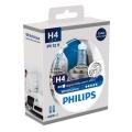 KOMPLET 2x Avtožarnica Philips WHITEVISION 12342WHVSM H4 PX26d/60W/55W/12V