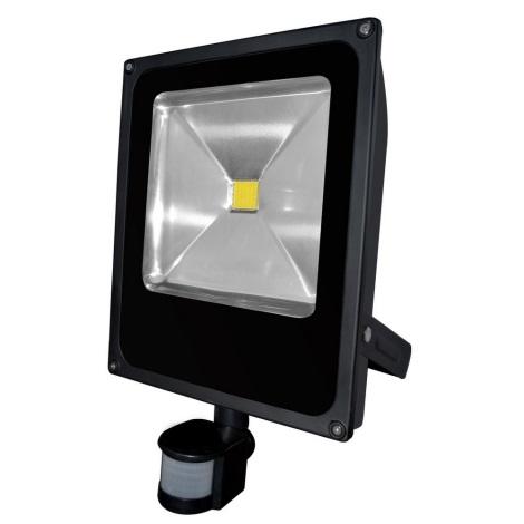 LED Reflektor s senzorjem gibanja DAISY LED/50W/230V IP44