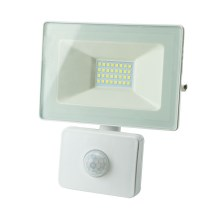 LED Reflektor s senzorjem TAK LED/30W/230V IP65 4000K