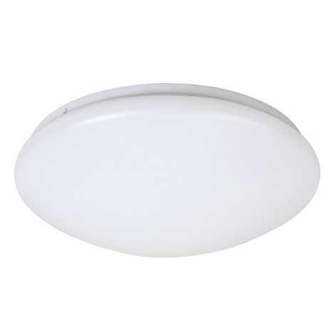 LED Stropna svetilka LUCAS LED/24W/230V