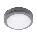 LED Zunanja stropna svetilka LED/13W/230V IP54