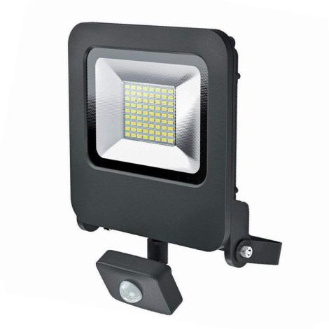 Osram - LED Zunanji reflektor s senzorjem ENDURA LED/50W/240V IP44