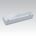 Zasilna svetilka CARLA LED LED/5,51W/230V začasna 1 ura IP65